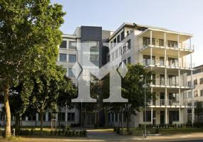 Neu-Isenburg, Hessen, ,Büro Umland,Miete,Dornhofstraße ,5146